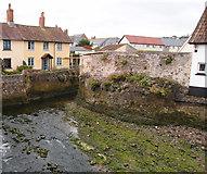 ST0743 : Washford River, Watchet, Somerset by Rick Crowley