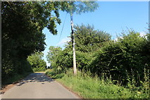 TL3934 : Lane from Nuthampstead to Anstey by David Howard