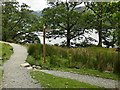 NY1716 : Footpath junction near Buttermere village by Graham Hogg