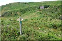 SM7624 : Coast path above Caer Bwdy Bay by Stephen McKay