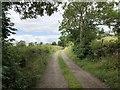 NZ3231 : Farm Track to Bishop Middleham by David Robinson