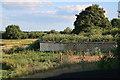 SU3416 : Sand Martin bank, Testwood Lakes by Hugh Venables
