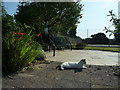 SO5968 : Cat by the Garden of Remembrance (Tenbury Wells) by Fabian Musto