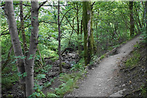 NY2822 : Footpath above Brockle Beck by Bill Boaden