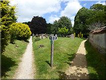 ST6601 : Graveyard, Cerne Abbas by Robin Webster