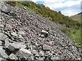 NU0016 : Scree slope by Jonathan Wilkins