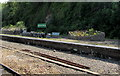 SS5532 : Disused platform at  Barnstaple railway station by Jaggery