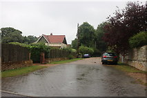 TM4974 : Millfield Road, Walberswick by David Howard
