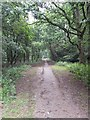 TQ5742 : Footpath onto Southborough Common by John P Reeves