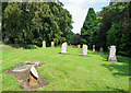 NZ1431 : Cemetery at Witton-le-Wear by Trevor Littlewood