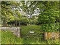 NH6671 : St Ninian's Chapel Graveyard by valenta