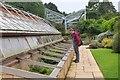NT2475 : Alpine collection, Royal Botanic Garden Edinburgh by Jim Barton