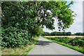 NZ2846 : Road heading away from Brasside by Trevor Littlewood