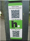 SH5571 : HiPoints information QR code for interesting graves on church island, Menai Bridge by Meirion
