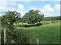 SK1421 : Fields north of Highfields Farm, Yoxall by Christine Johnstone