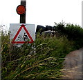 SO5219 : Neighbourhood Watch sign, Llangrove, Herefordshire by Jaggery