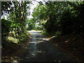 TG1717 : Bilney Lane, Felthorpe by Adrian Cable