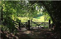 SX8158 : Gates on NCN28 by Derek Harper