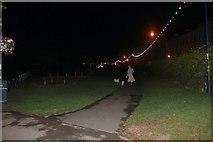 TA1180 : Walking the dogs by Filey beach by David Howard
