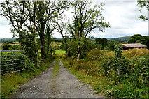 H3568 : A rough lane, Cornavarrow by Kenneth  Allen