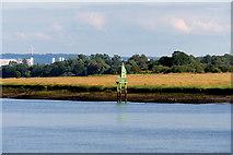 NS4870 : River Clyde, Green Light Beacon at Newshot Island by David Dixon