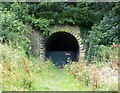 NZ8514 : South portal of the disused Sandsend Tunnel by Mat Fascione