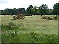 SU4499 : Part of Frilford Heath Golf Club course by Vieve Forward
