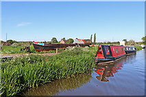 SK0220 : Moored narrowboats near Bishton in Staffordshire by Roger  Kidd