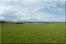 NU1535 : Fields near Budle Bay by DS Pugh