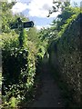 SX9073 : South on Footpath No.13, Bishopsteignton by Robin Stott