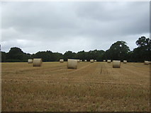 SJ8814 : Bales in stubble field near Bickford by JThomas