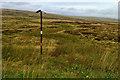 SE0506 : Gas pipeline marker by Mick Garratt