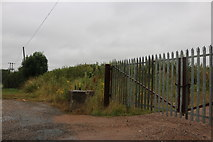 TM3368 : Gate by Badingham Road, Peasenhall by David Howard