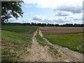 SU3898 : Farmland near the Warren, Hinton Waldrist by Vieve Forward