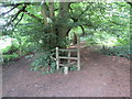 TQ1347 : Stile in Rookery Wood, near Wotton by Malc McDonald