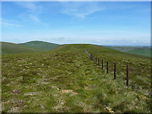 SJ1033 : Fenceline making for Foel Wen by Richard Law