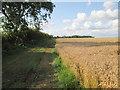 TA2033 : Field  edge  track  toward  Sproatley  Grange by Martin Dawes