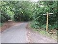 TQ1348 : Public footpath at Westcott Heath near Dorking by Malc McDonald