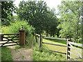 TQ1548 : Greensand Way at Westcott, near Dorking by Malc McDonald