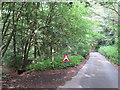 TQ1548 : Greensand Way, near Dorking by Malc McDonald