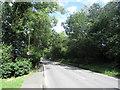 TQ4495 : Abridge Road near Chigwell by Malc McDonald