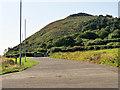 O2717 : Bray Head Cliff Walk by David Dixon