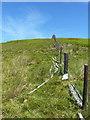 SJ1033 : Small white stone on the fenceline near Foel Wen by Richard Law