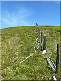 SJ1033 : Small white stone on the fenceline near Foel Wen by Richard Law