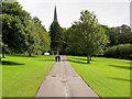 V9590 : The Circular Walk, Killarney National Park by David Dixon
