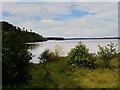 V9489 : Lough Leane, Killarney National Park by David Dixon
