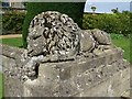 ST9769 : Lion at Bowood by Philip Halling