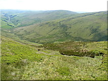 SJ0834 : Steeply downhill into Cwm Llawenog by Richard Law