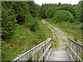 SN8856 : Bridleway to Abergwesyn in Powys by Roger  Kidd