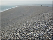 SY6873 : Chesil Beach at Chiswell by Peter S
